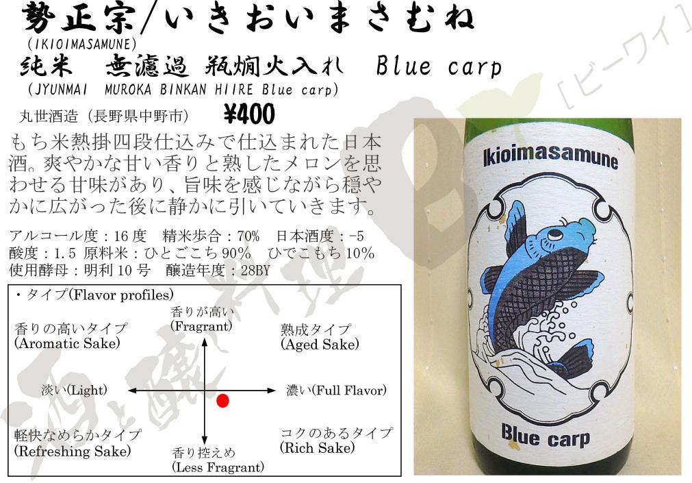 Blue_carp