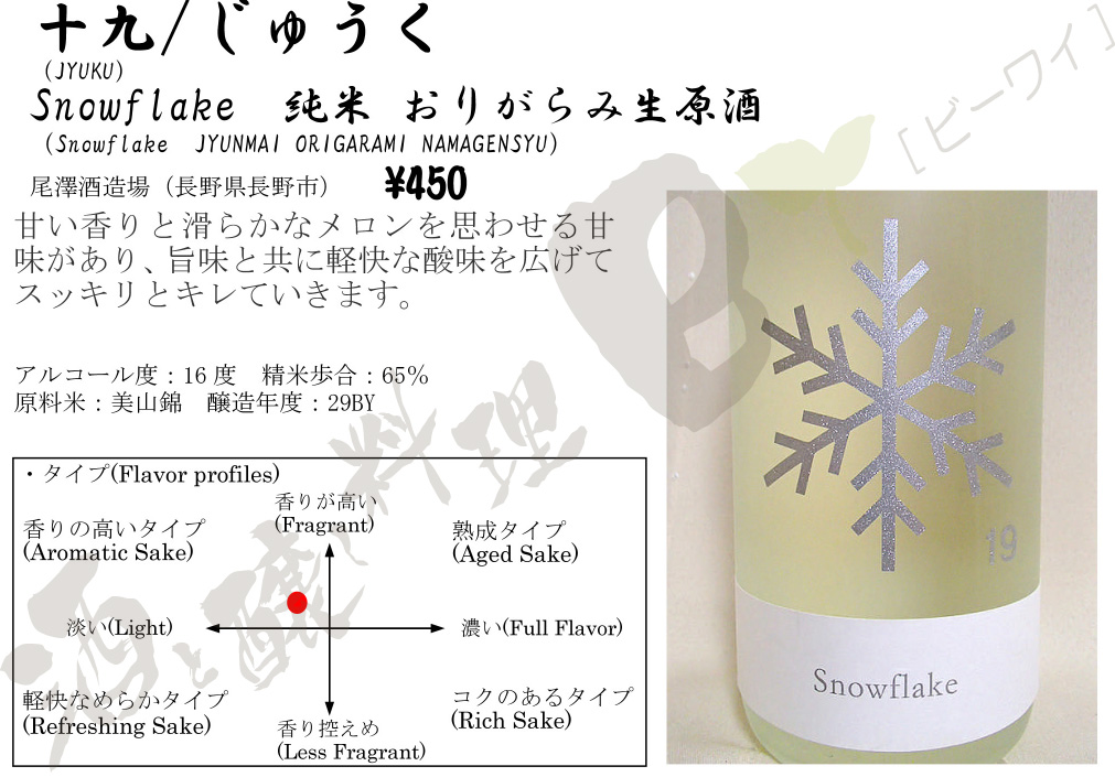 Snowflake29by