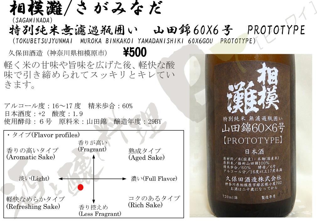 60x6prototype